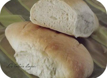 primo pane con Lievito madre..